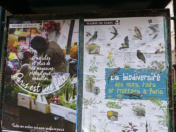 biodiversité dans les parcs