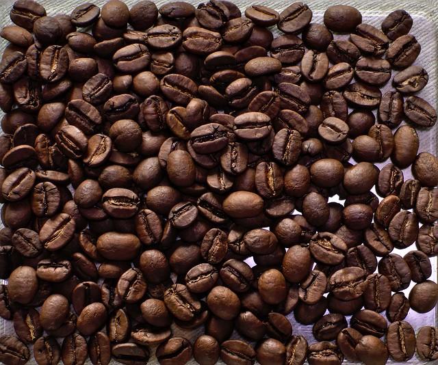 Die Kaffee Brasil Cerrado San Rafael