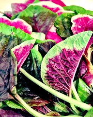 Found some beautiful red #spinach in the store today. Almost didn\'t want to eat it it\'s so pretty!