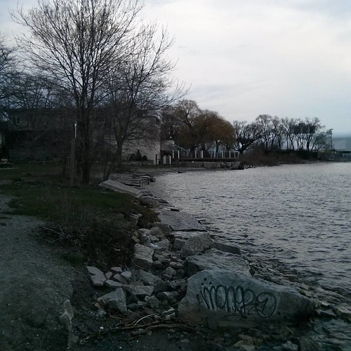 On the beach #toronto #lakeshore #lakeontario #palaisroyale