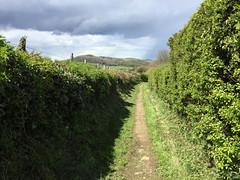 Walk to Cam & Dursley
