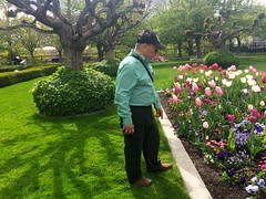 Ali admiring the flowers at Temple Square,  Photo by CRudin