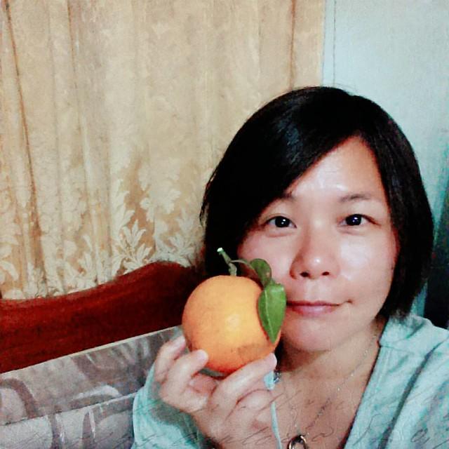 20160110 公公種的橘子 今年出七個 這是其中一個