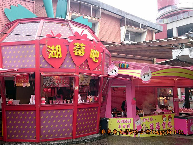苗栗草莓大湖酒莊清安洗水坑豆腐街15