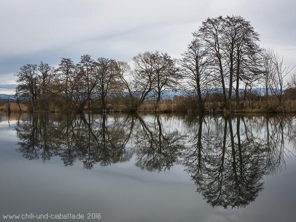 Am Reibersbacher See