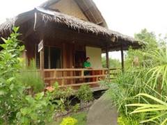moalboal-Maya's Native Garden