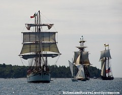 parade of sail halifax harbour nova scotia Tall Ships 2012