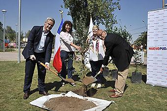 Nuevo Pudahuel Plan de Reducción Huella de Carbono plantación 1er arbol Mar16 (Nuevo Pudahuel)