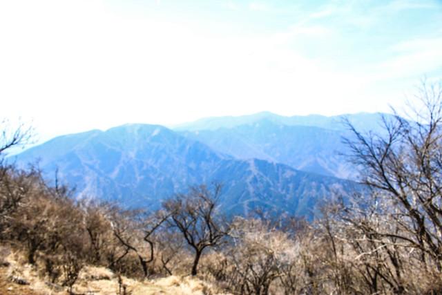 20110417-大山-0096.jpg