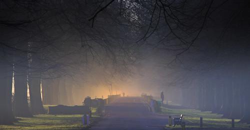 road park uk morning light shadow sky sun mist tree grass leaves fog wales sunrise canon eos dawn britain outdoor branches cymru cardiff caerdydd fields 5d llandaff pontcanna wentloog llandafffields stevegarrington