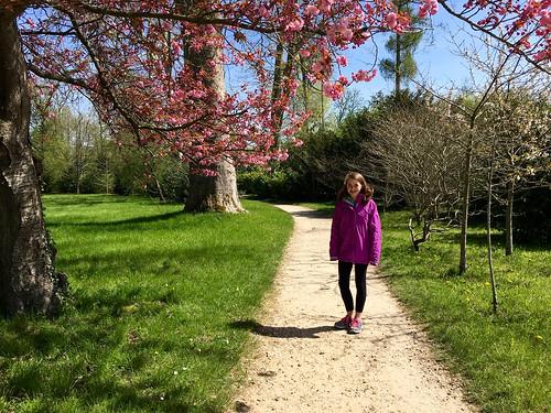 Spring in Paris is beautiful!