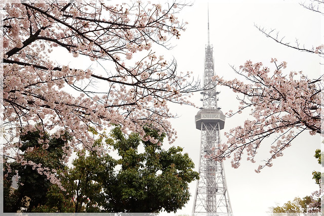 Photo:日本名古屋_久屋大通公園.07 By KeikoS.ryoko
