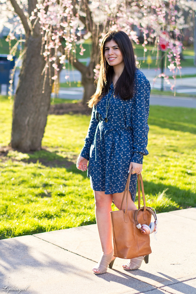 dragonfly dress, brown tote, mules, marley headphones-9.jpg