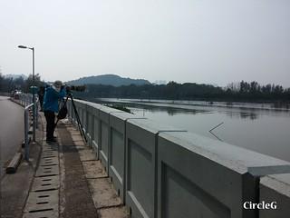 CircleG 遊記 元朗 南生圍 散步 生態遊 一天遊 香港 (54)