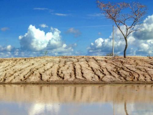 Chuva no Sertão Alagoano