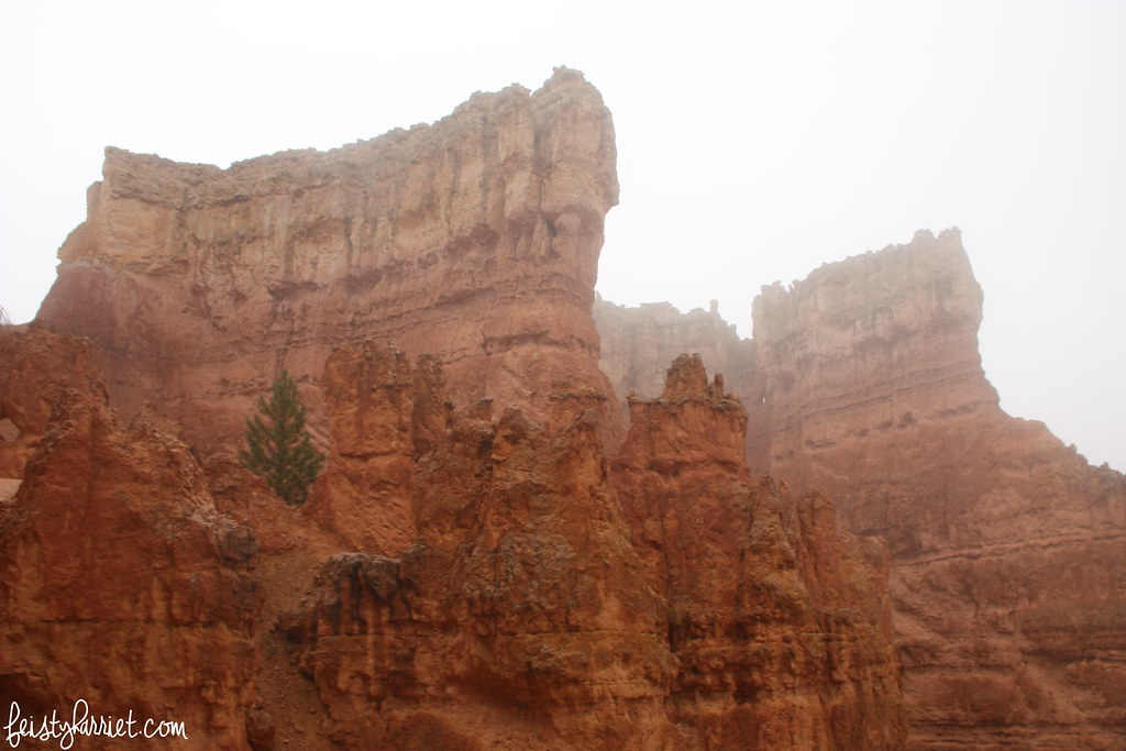 Bryce Canyon National Park_feistyharriet_2015 (5)
