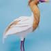Heron. 2015 by : : PINE : :