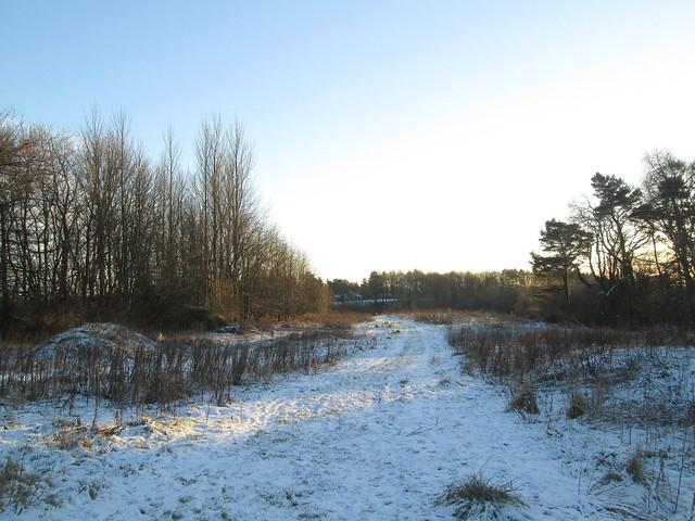 Balbirnie snow