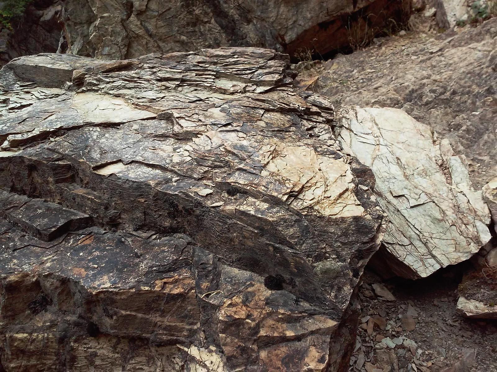 Ksikkihkнni Rock, Running Eagle Falls, Blackfeet Glacier, Montana