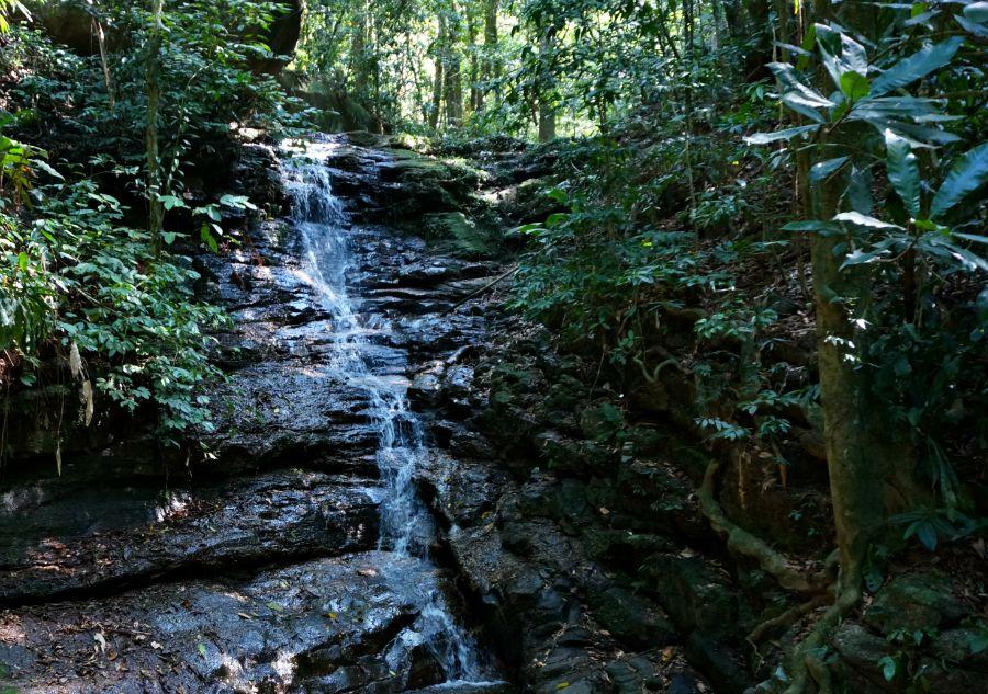 Tijuca Forest Waterfall