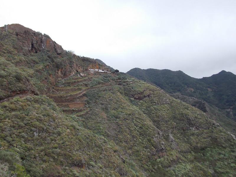 Anaga Hiking (59)