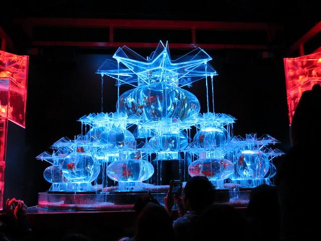 Art Aquarium Castle (アートアクアリウム城), Kyoto