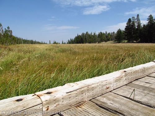 More meadow views along the Stough Creek Basin Trail, Wind River Range, Wyoming