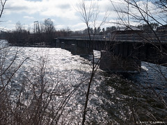 Otonabee River in spring