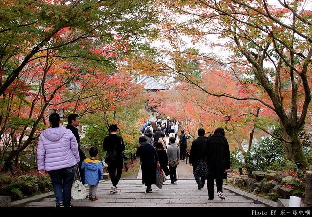 京都-永觀堂039