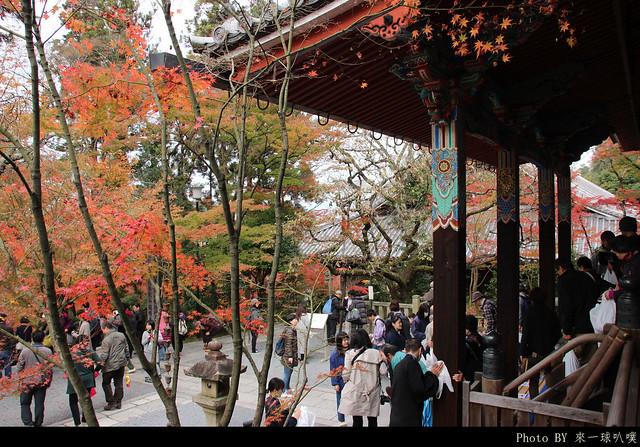 京都-永觀堂122