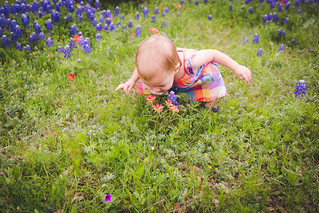 18Month-BlueBonnet-16