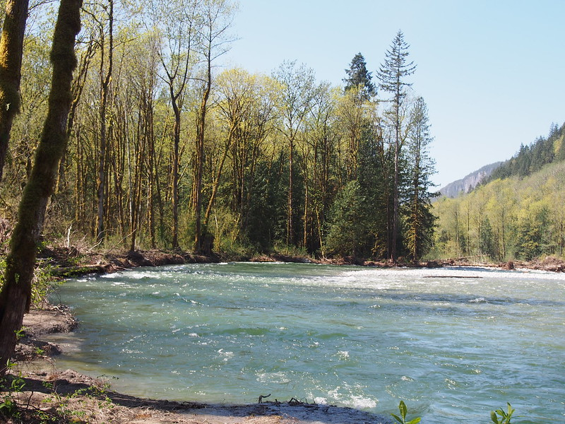 North Fork Skykomish River
