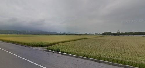 台東縣關山鎮周邊景點吃喝玩樂懶人包 (11)