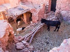 20151121_Morocco_2693 Aït Ben Haddou sRGB