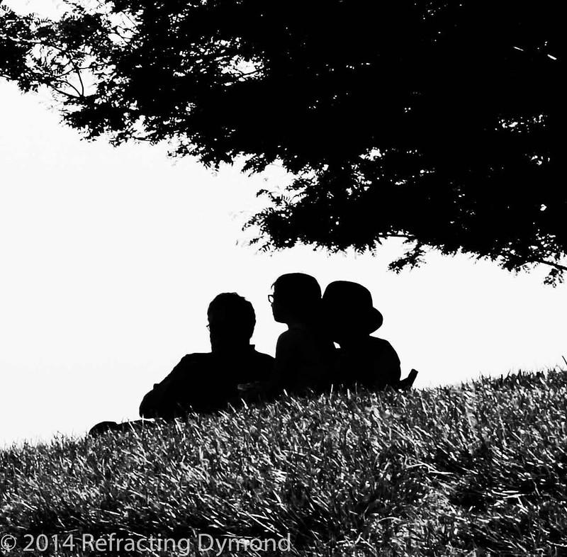 Park Silhouette