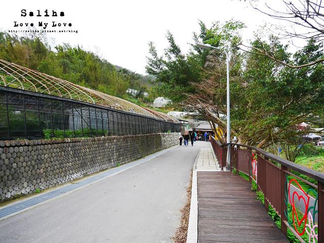 台北內湖一日遊踏青郊遊爬山碧山巖步道 (38)