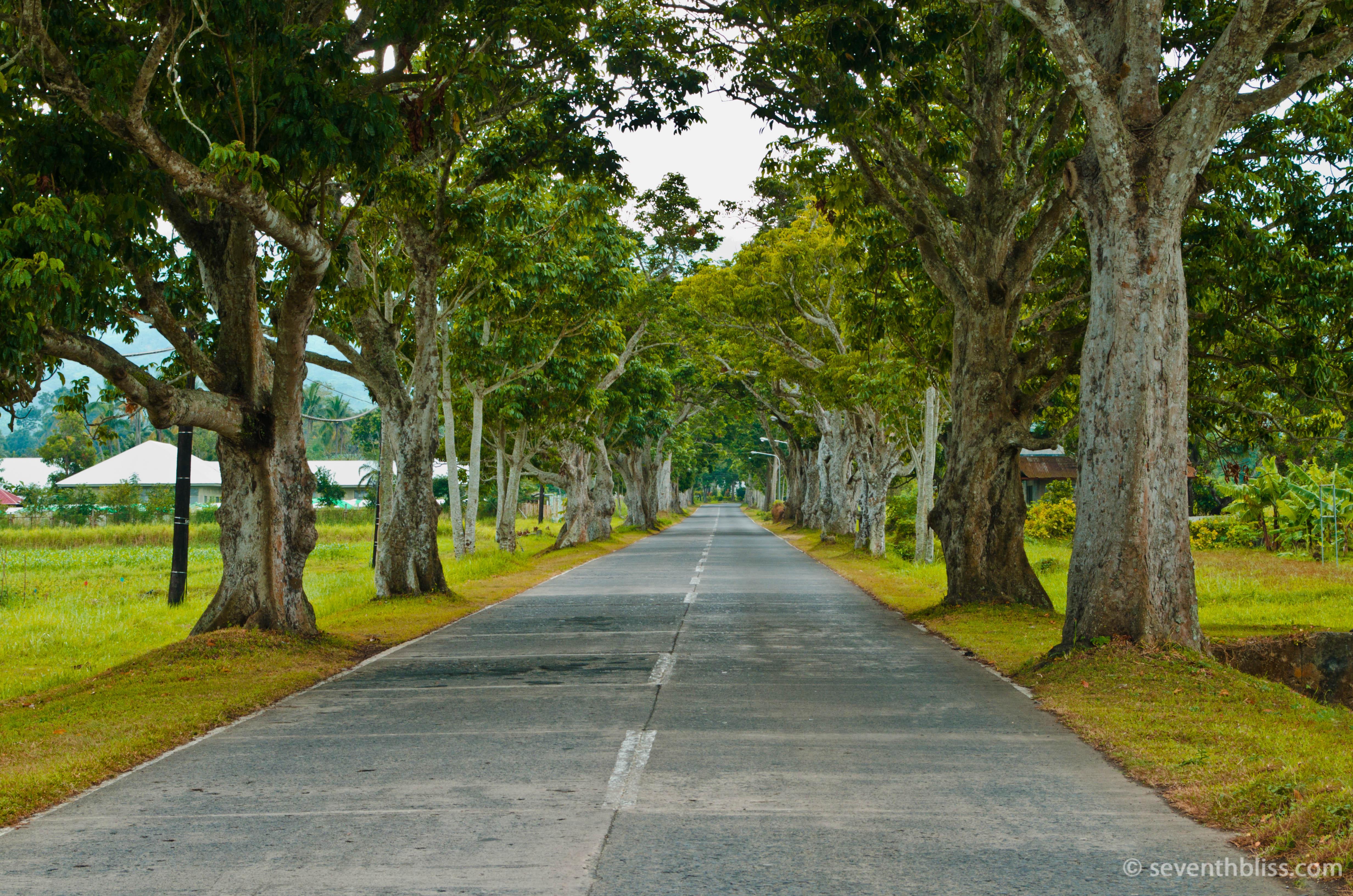 seventhbliss_laguna_roadtrip (42)