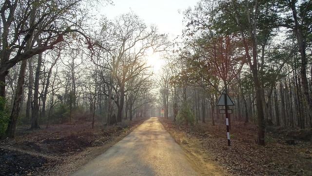 Haliyal-Kalaghatagi Rd