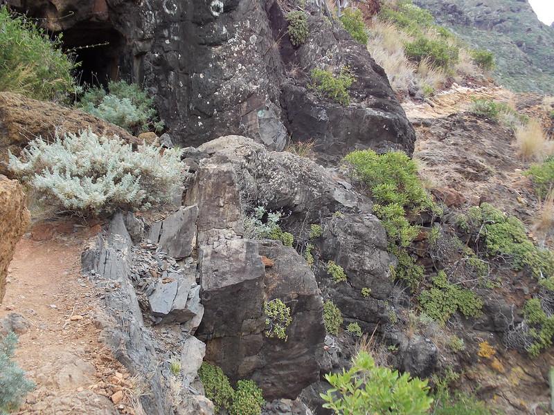 Anaga Hiking (14)