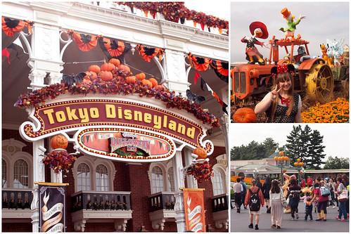 Welcome to Disneyland!