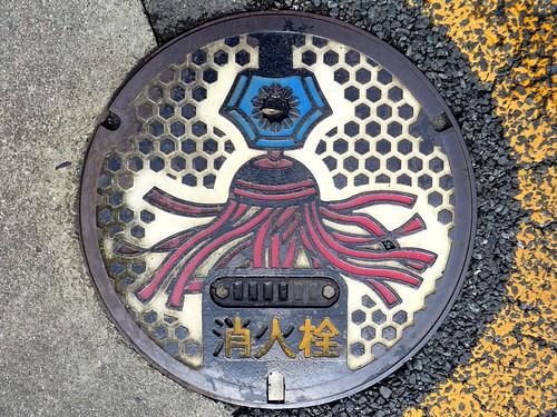 Ito Shizuoka, manhole cover 4 (静岡県伊東市のマンホール4)