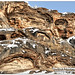 Feb 5 2016 - Rock formations a result of mineral hot springs thermal activity by lazy_photog