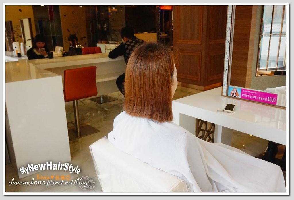 HappyHairTon短髮+墨綠色染髮 - 06