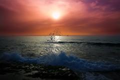 sunset at Tel-Aviv beach