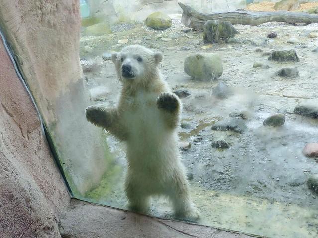 Hello! I am LILI ❤