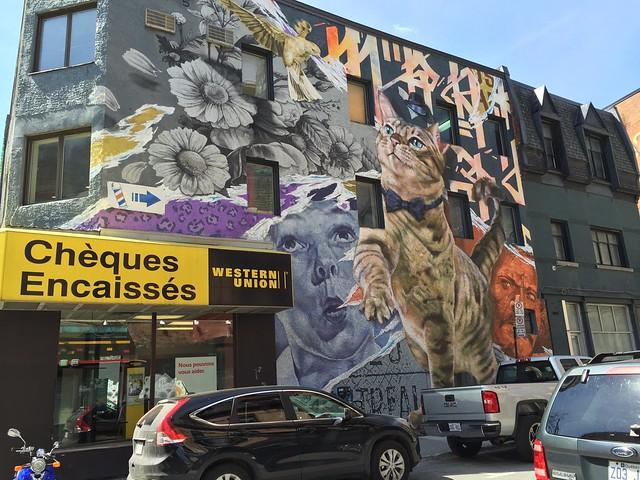 A Wall of Graffiti