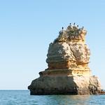 Típica roca