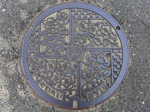 Taihei Fukuoka, manhole cover (福岡県大平村のマンホール)