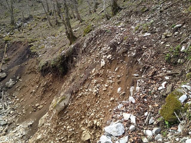 御池岳 コグルミ谷 登山道 崩落