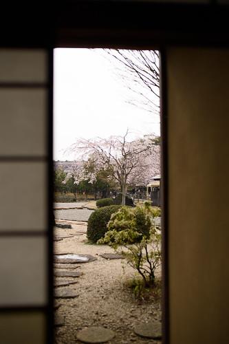 20160402 Nishio Historical Park 5
